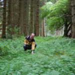 foraging course wales