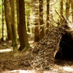 weekend bushcraft course uk north wales
