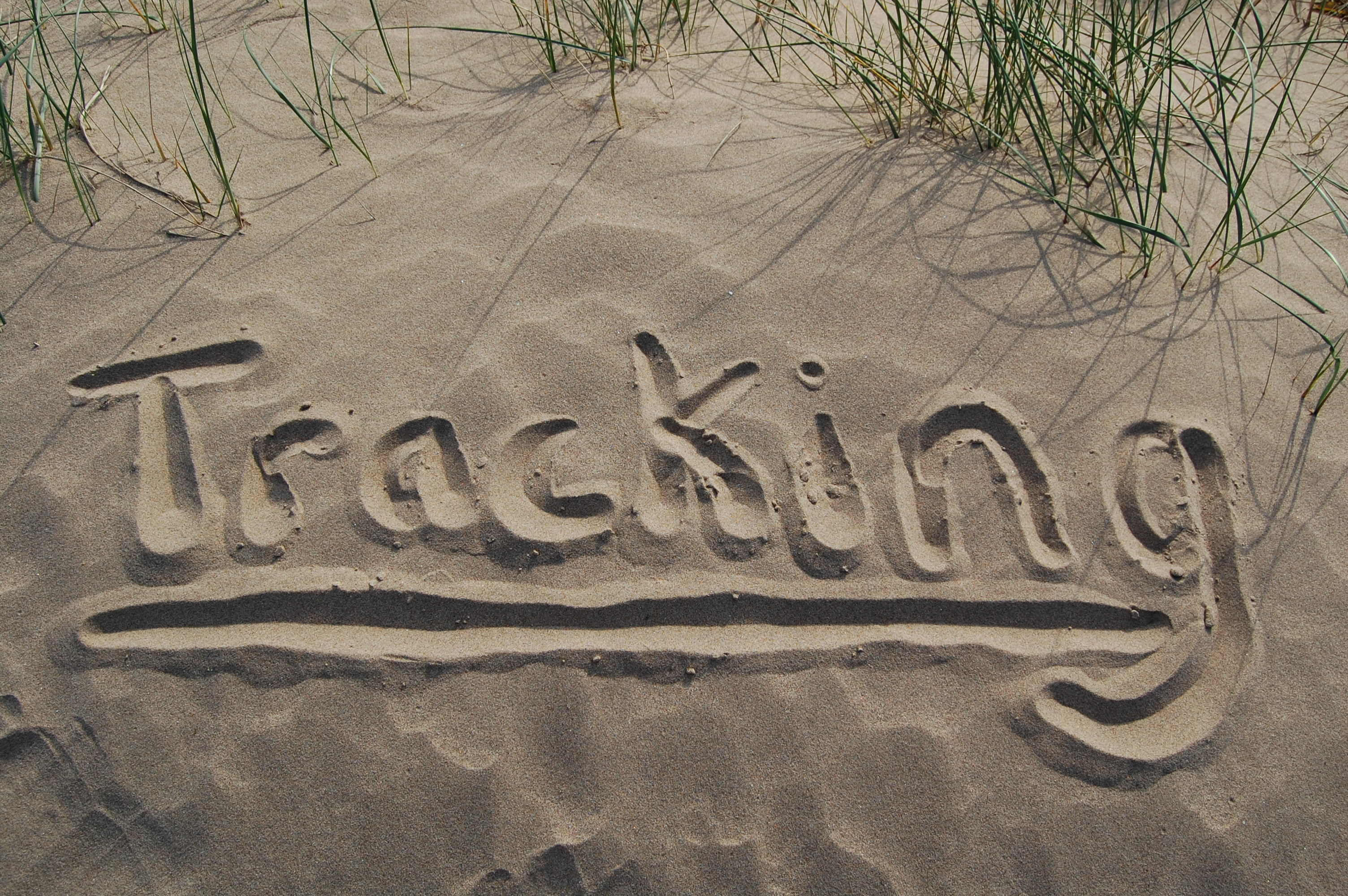 Basic Tracking courses in North Wales