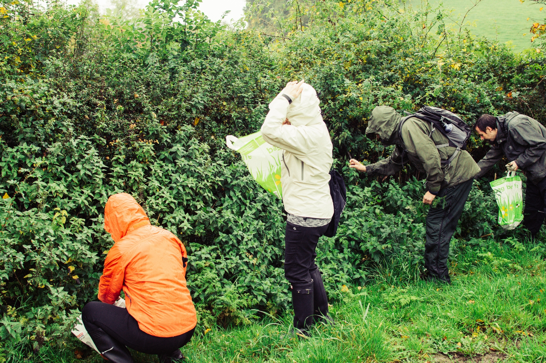 A Ban On Foraging Bristol City Council Wants One Apparently