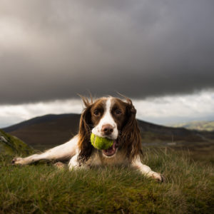 uk outdoor photography training