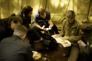 foraging course and walk north wales