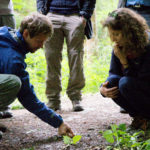 natural navigation course