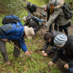 wild food course