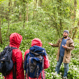 uk foraging course