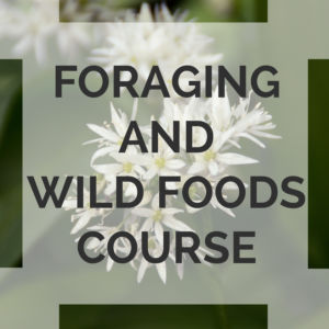foraging course uk