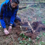 bushcraft courses in Wales