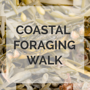 coastal foraging course