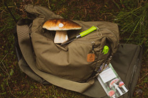foraging wales