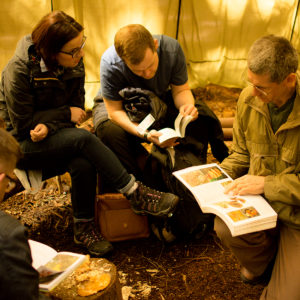 foraging training uk