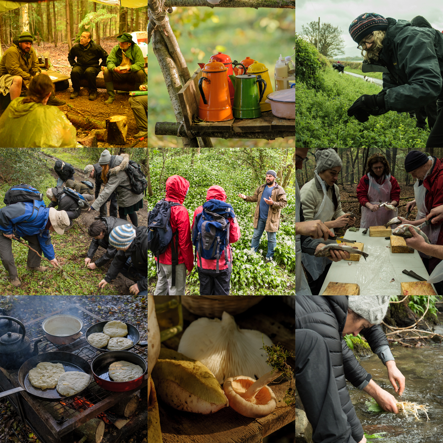 best foraging courses uk