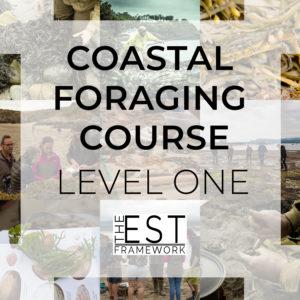 professional coastal foraging