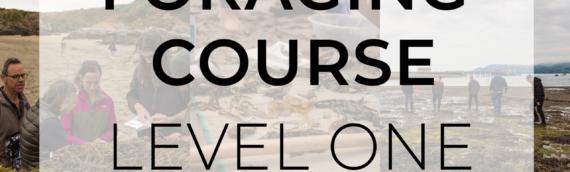 L1 Coastal Foraging Basics Course
