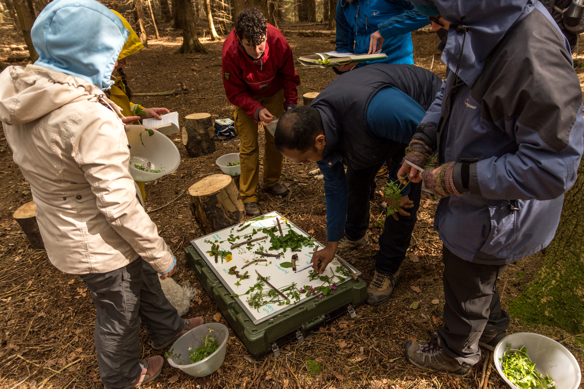 foraging instructor course